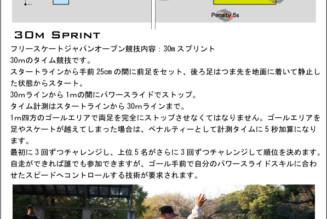 ジャパンオープン2016・競技4